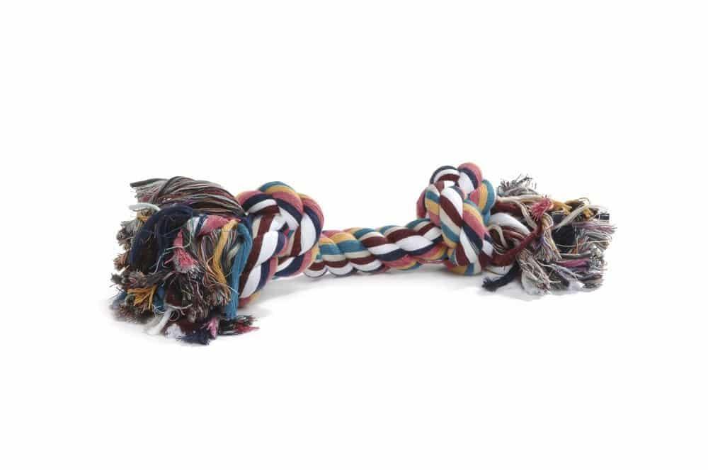 corde coton jouet chien