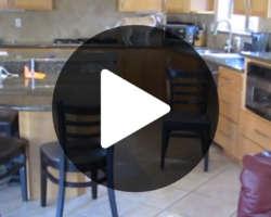Vidéo d'un chien voleur de nourriture