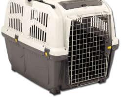 Test et avis cage de transport Skudo pour chiens et chats