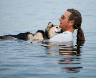 Laisser son chien se baigner