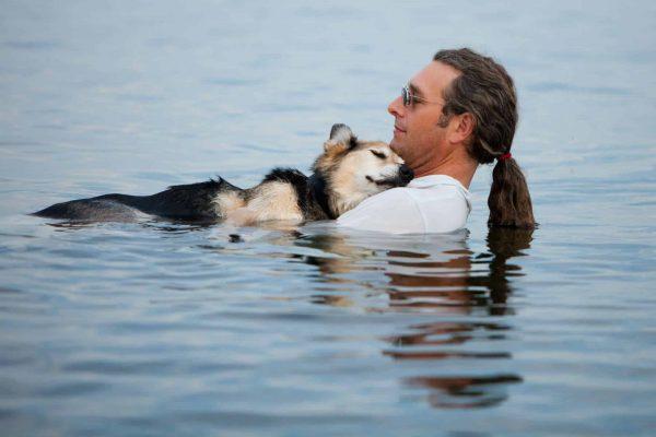 Laisser son chien se baigner et nager dans l'eau