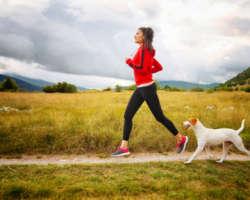 Quel sport pratiquer avec son chien ? Agility, flyball, obé-rythmée, canicross