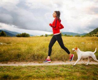 Sports canins : lequel pratiquer avec son chien ?