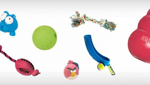 Quels jouets choisir pour son chien ?