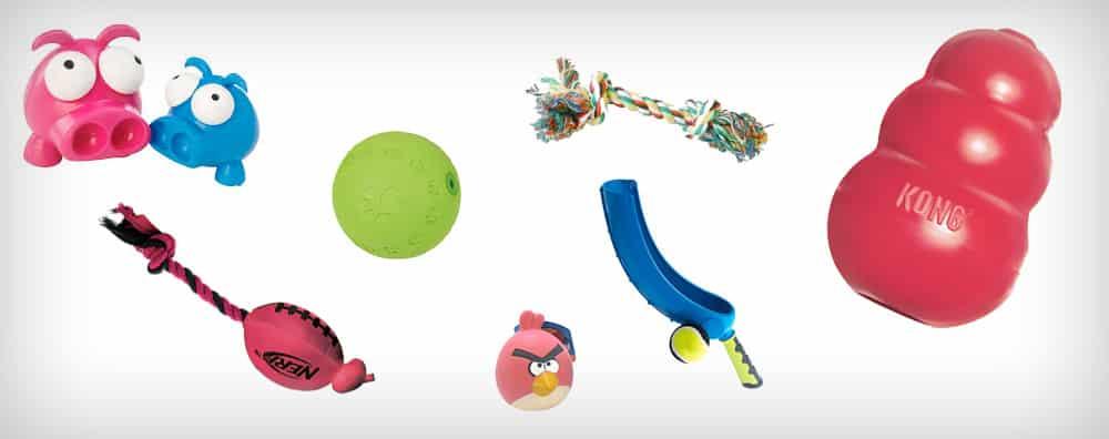 les jouets pour chiens