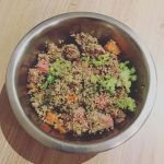 Recette repas pour chien : boeuf / quinoa / légumes