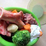 BARF vs Croquettes vs Fait-maison… quelle alimentation choisir pour ton chien ?