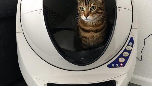 Les bacs à litière auto nettoyant