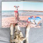 Créer un album photo pour son animal : conseils & astuces