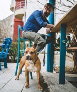 chien restaurant avec son maître