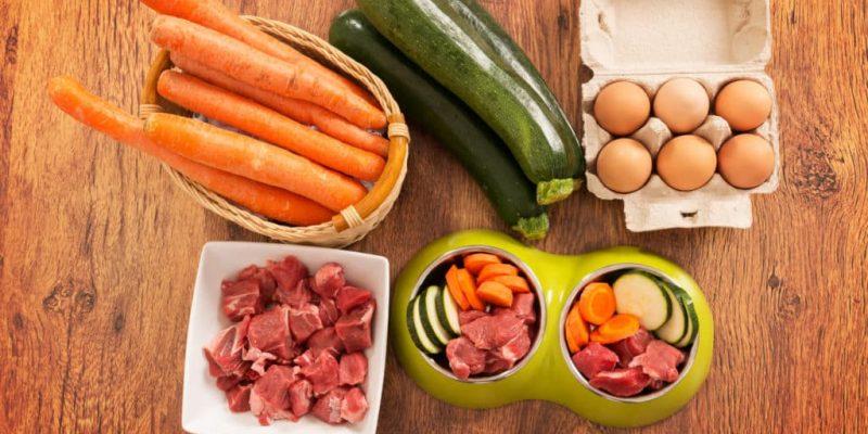 Alimentation BARF pour chiens : avantages, inconvénients