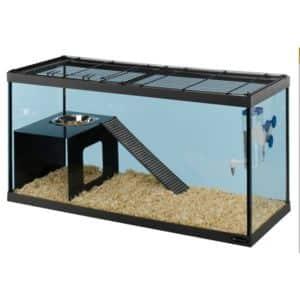 cage en verre pour lapins