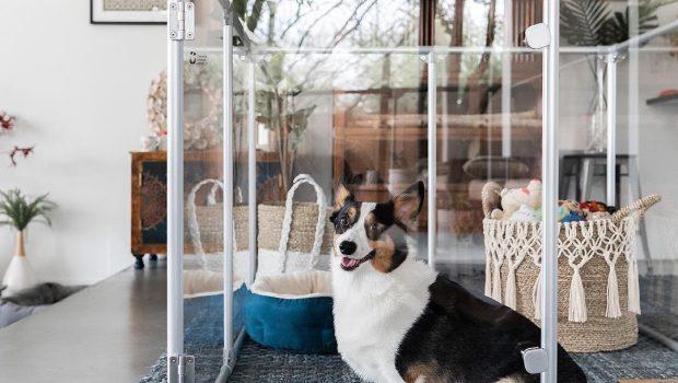 5 Cages d'intérieur pour chien à découvrir