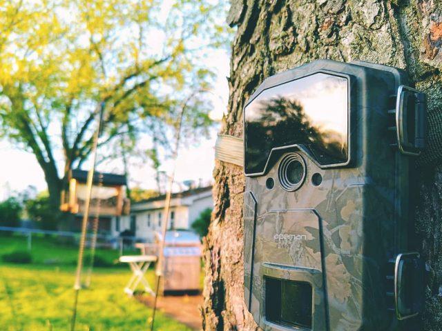 Caméra de chasse : les critères pour bien la choisir