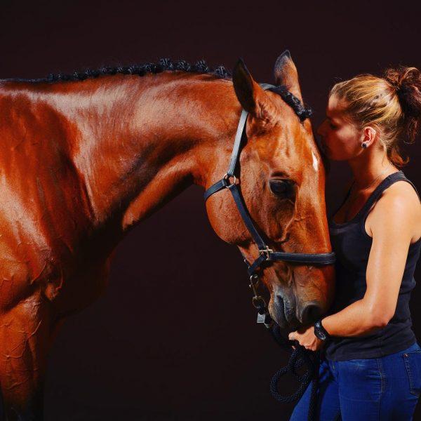 La zoothérapie : le bien-être humain assuré par les animaux