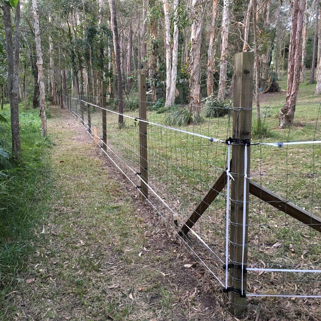 Cl ture lectrique pour chien choix et installation - Cloture jardin chien ...