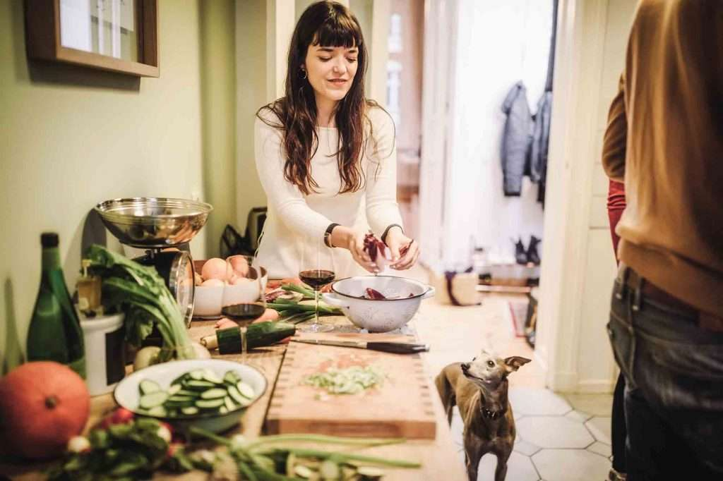 Maître qui cuisine un repas aux légumes pour son chien