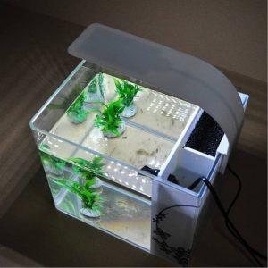 Choisir Un Eclairage Led Pour Aquarium Conseils Et Infos