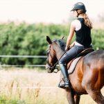 7 bonnes raisons de pratiquer l'équitation