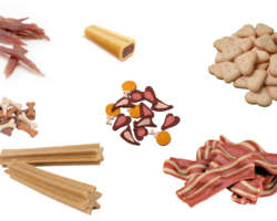 Avis sur les friandises et compléments alimentaires pour chien