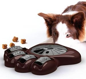 pierderea în greutate neexplicată în labradors