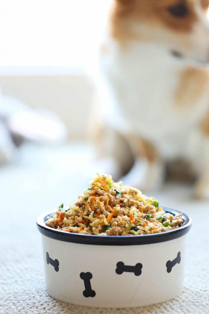 gamelle ration ménagère chien