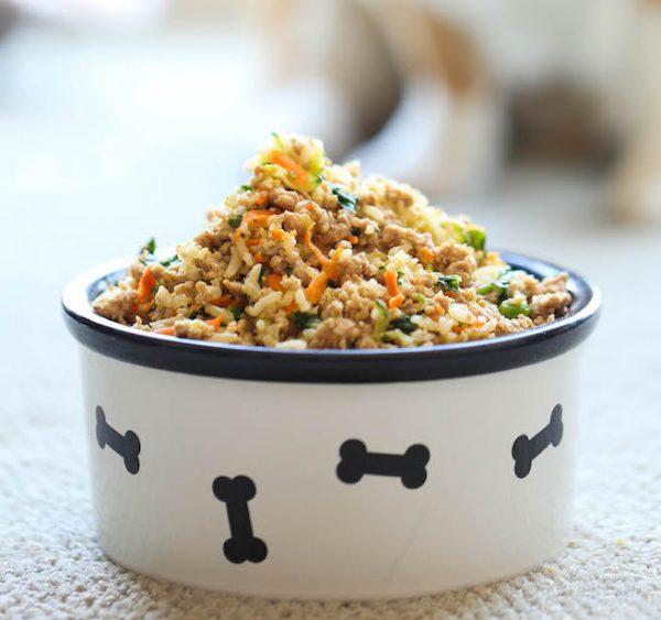 Cuisiner pour son chien : ce qu'il faut savoir