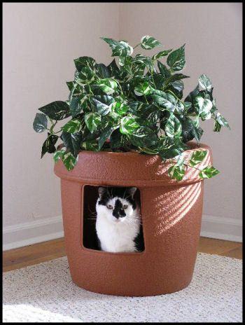 Litière cachée pot de fleur