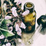4 médecines naturelles pour la santé de ton chat