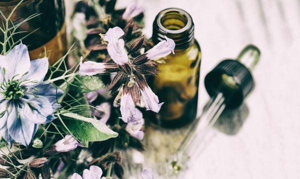 6 médecines naturelles pour la santé de son chat
