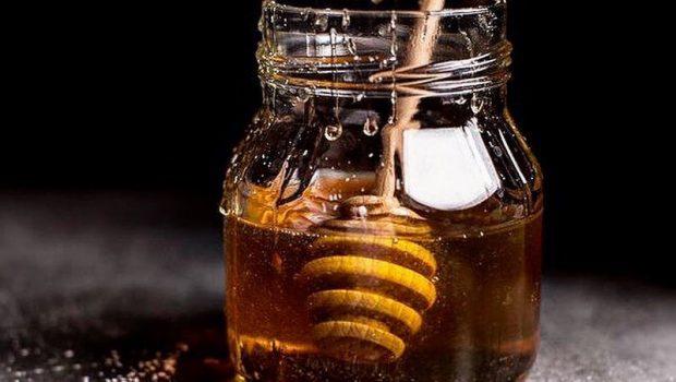 Miel pour chien : bienfaits, effets et utilisations