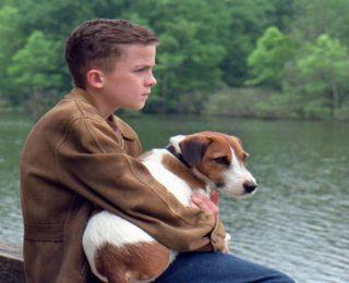 Top 10 des films avec des chiens