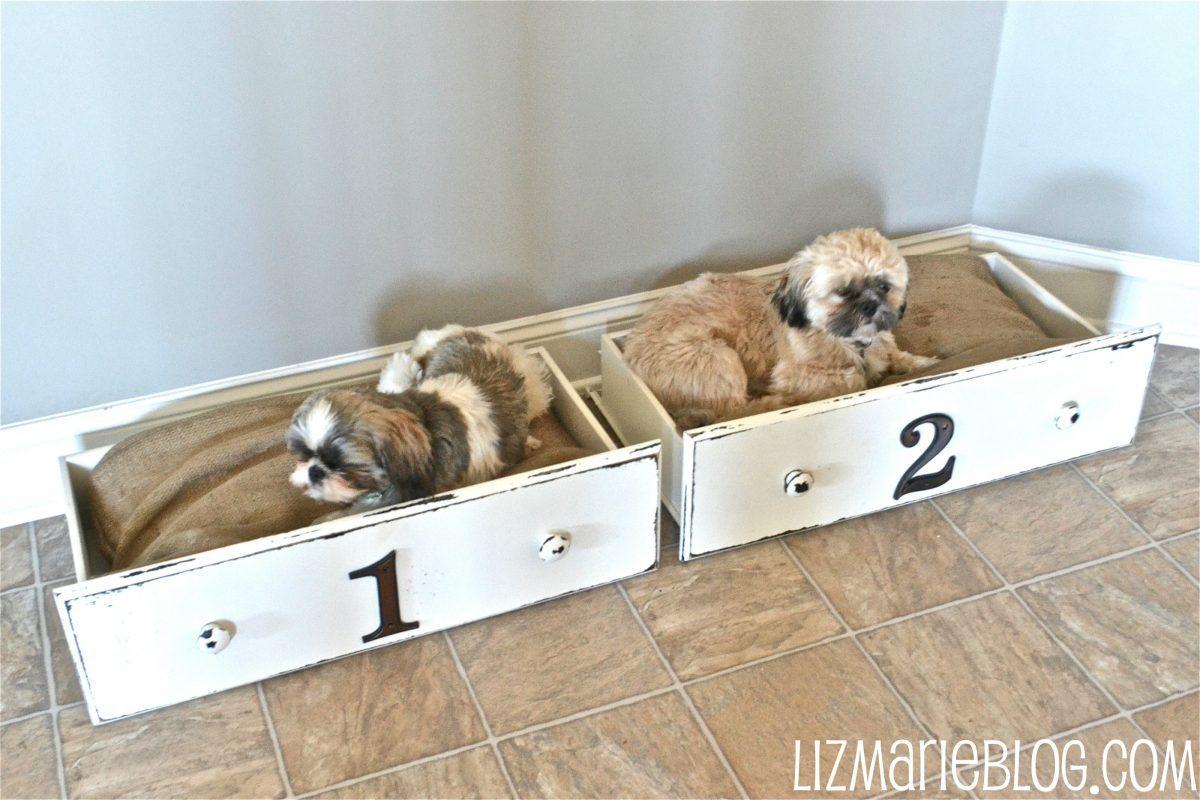Lit Pour Chien Palette 20 idées diy de paniers pour chiens et chats