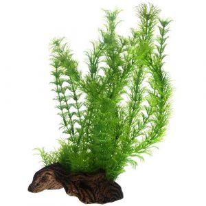 plante plastique aquarium