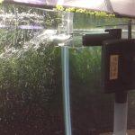 Quelle pompe choisir pour son aquarium ?