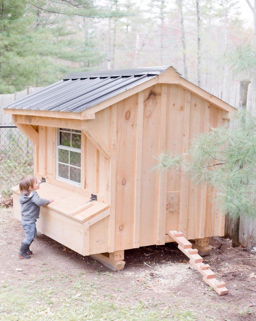 poulailler cabane en bois