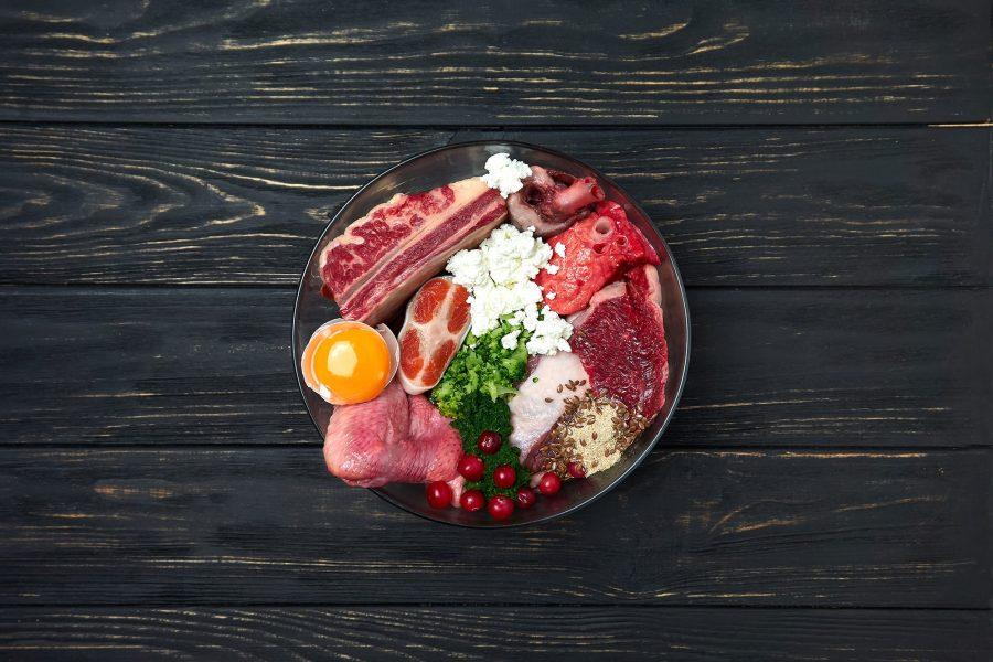 Raw Feeding : alimentation pour chien