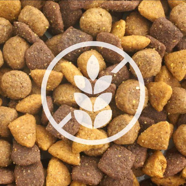 Croquettes sans céréales pour chien : quels bienfaits ?