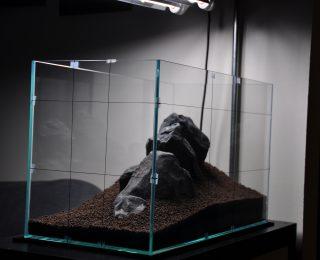 Le sol et les décors de l'aquarium d'eau douce