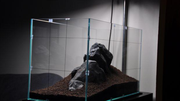 Le sol de l'aquarium d'eau douce