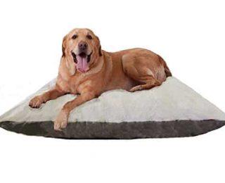 Panier pour chien : quelle matière choisir ?
