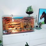 Tapis chauffant pour terrarium : infos & conseils