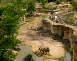 Zoo de Doué-la-Fontaine